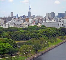 View from Tokyo Bay by Robert Meyers-Lussier