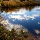 The River Bend - Derwent Valley, Tasmania by clickedbynic
