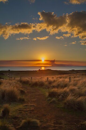 Stanley Sunset, Tasmania by Elaine Teague