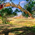 Farm Life - Mount Barker, South Australia by Mark Richards