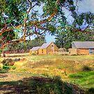 Farm Life II - Mount Barker, South Australia by Mark Richards