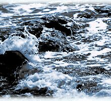 The Song of Rocks and the Sea by Roger Sampson