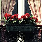 Red Gingham, Red Geraniums by Caroline Fournier
