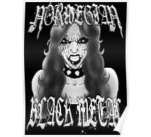Norwegian Black Metal Poster