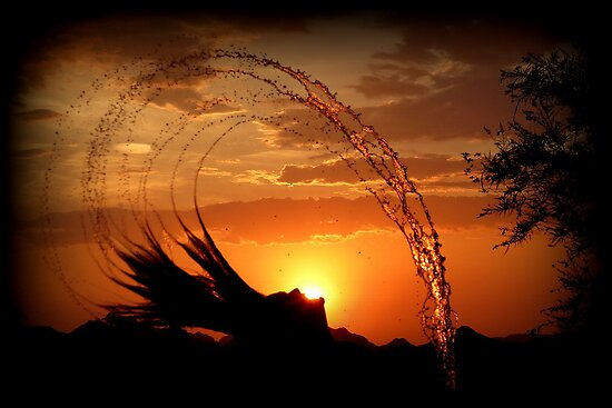 Sunset Splash by Kimberly Chadwick