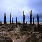 The skin & bones of Port Willunga Jetty  by BBCsImagery