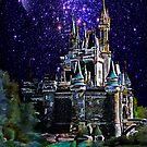 Cinderella Castle. by andy551
