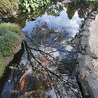 Campbelltown's Japanese Garden by Harry Roma