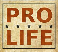 Pro Life Billboard by morningdance