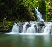 Elabana Falls, Lamington National Park, Queensland, Australia by Michael Boniwell