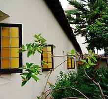 Santa Clara de Asis Mission #13 by AmishElectricCo