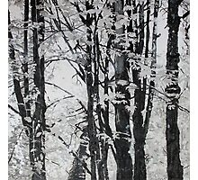 Specks of Light, mixed media on canvas Photographic Print