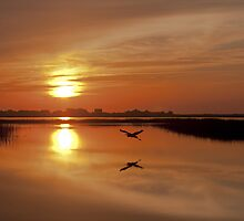 Sunrise at the Marsh Walk by Terry Shoemaker