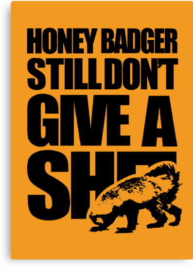 Honey Badger Still Don't Give A Shit by jezkemp