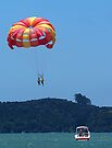 Love is...........two on a paragliding trip .......! by Roy  Massicks