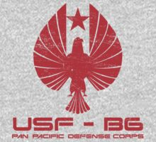 Pan Pacific Defense Corp by superiorgraphix