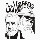 Old Wizards by jnote