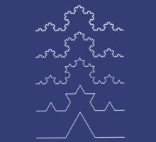 The Koch Curve by Rob Price