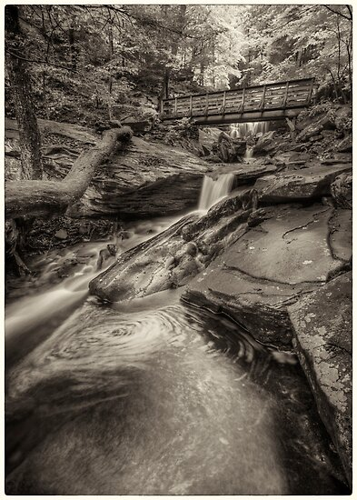Below R.B. Ricketts Falls June 2013 by Aaron Campbell