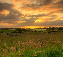 Ballynoe Stone Circle by Jon Lees