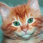 Kitten by gregorydean