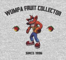 Wumpa fruit collector by kjwgaming