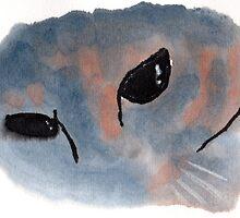 Contemplative Cat by dosankodebbie
