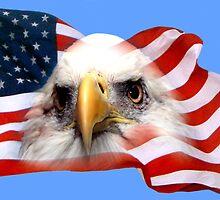 EAGLE & FLAG by TomBaumker
