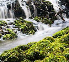 Olivia cascades 2 by bluetaipan
