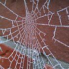 Spider's Web by LemonLion