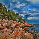 USA. Maine. Acadia National Park. Rugged Coastline. by vadim19