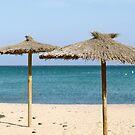 Thatch Beach Umbrellas by Vac1