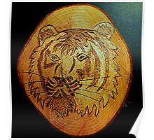 Tiger Portrait. Poster