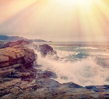 Point Lobos in the Haze by Angela Stanton