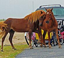 Pony Love by kutekatgurl