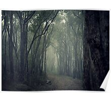 A Road Less Travelled Poster