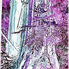 Woods Fantastica~ by GraNadur
