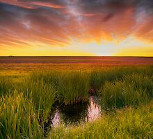 Saskatchewan 7283_13 by Ian McGregor