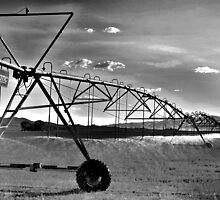 watering hay Winnemucca by DonActon