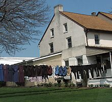 Mennonite Laundry 2 by Betty Mackey