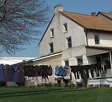 Mennonite Laundry 2 by Betty Mackey