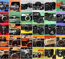 Camera Collage II by wayneyoungphoto