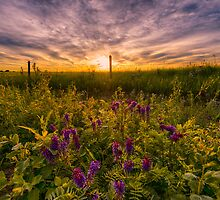 Saskatchewan Sunrise 7483_13 by Ian McGregor