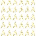 Command - Star Trek  by bericed