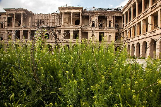 King's Palace, Kabul by David R. Anderson