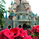 Auberge De Cendrillon by Margybear