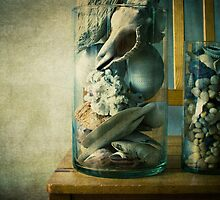 « Cabinet of curiosities » by Thierry Wojtczak