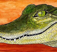 Anahuac Alligator by Doug Hiser