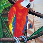 Scarlet Macaw Wildlife Acrylic Painting by Rick Short