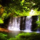 Wonderous Waterfall by Bill Cannon